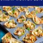 Shrimp Wonton Cups   A Nerd Cooks