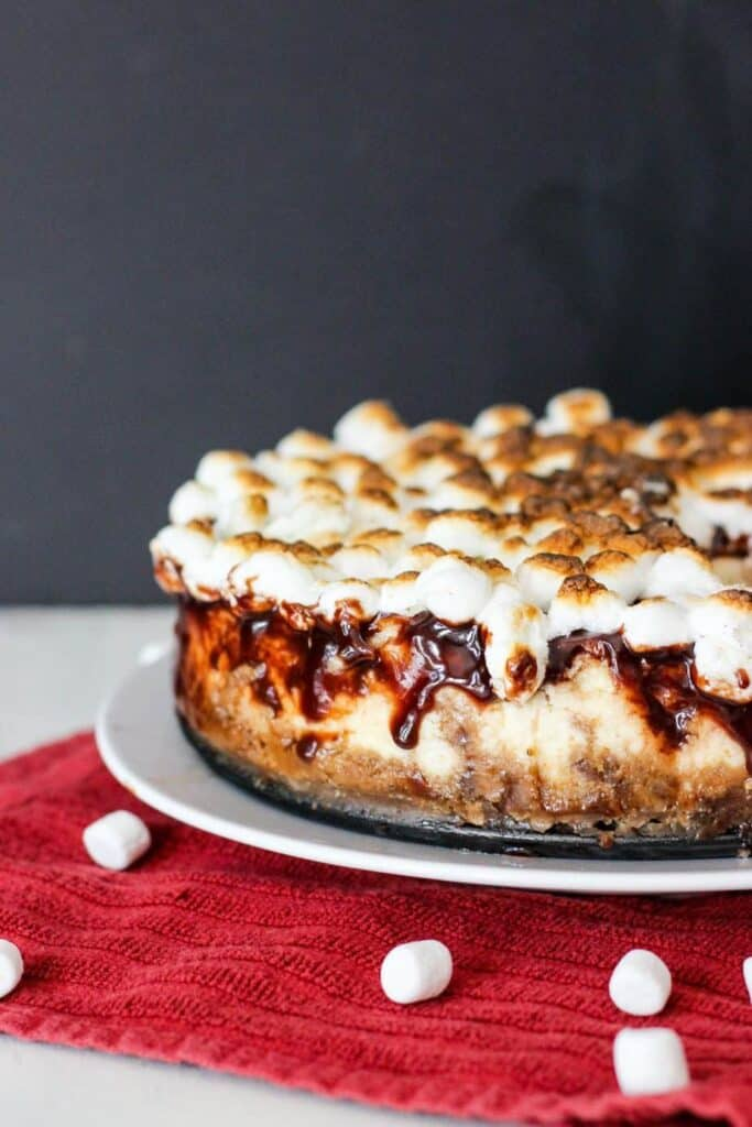 S'mores Cheesecake   A Nerd Cooks
