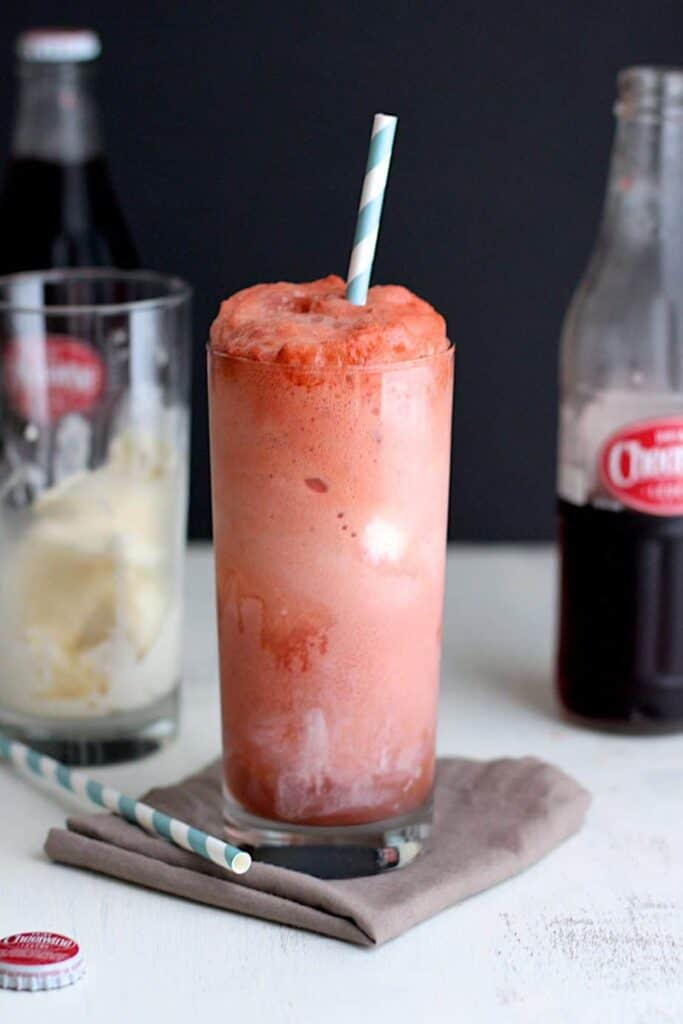 Cheerwine Ice Cream Floats | A Nerd Cooks