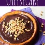 Peanut Butter Cheesecake | A Nerd Cooks