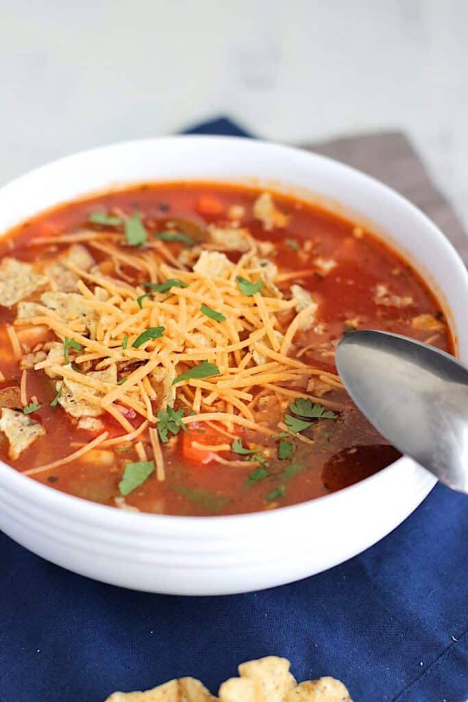 Mexican Chicken Soup | A Nerd Cooks