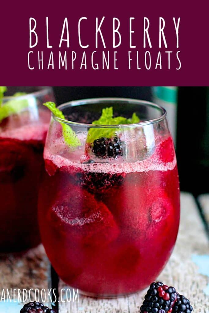 Blackberry Champagne Floats | A Nerd Cooks