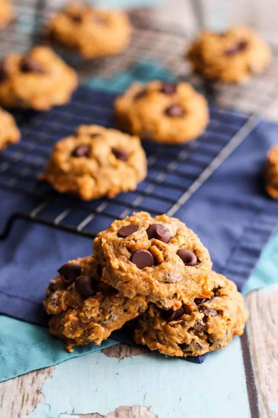 Pumpkin Chocolate Chip Oatmeal Cookies | A Nerd Cooks