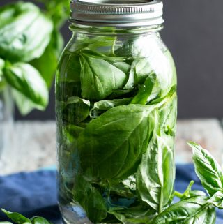 Basil-Infused Vodka | A Nerd Cooks