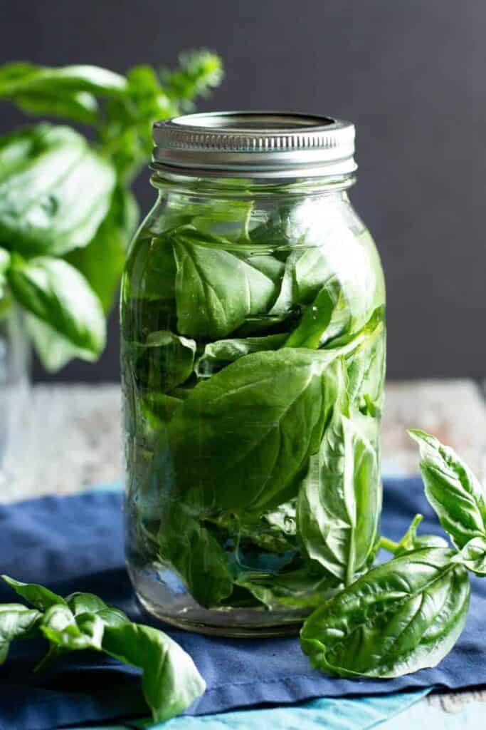 Basil-Infused Vodka | A Nerd Cooks