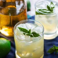 Basil Vodka Gimlet   A Nerd Cooks