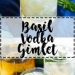 Basil Vodka Gimlet | A Nerd Cooks
