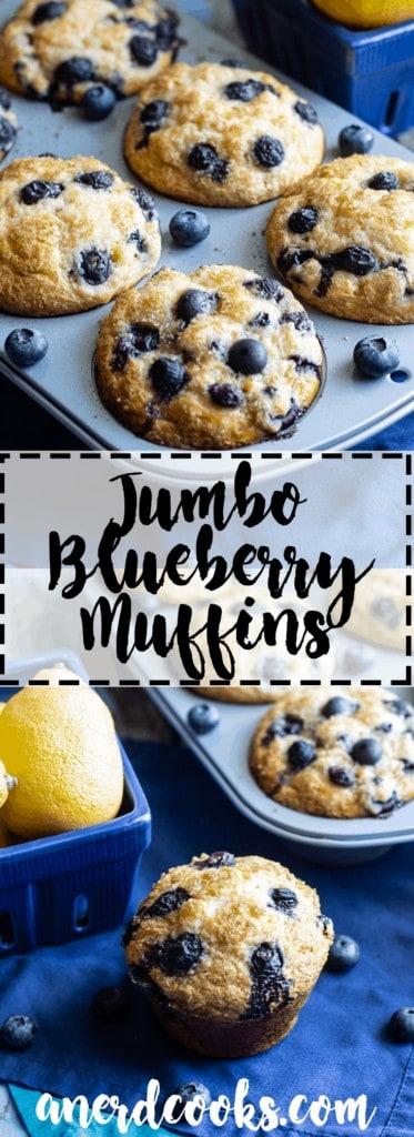 Jumbo Blueberry Muffins   A Nerd Cooks