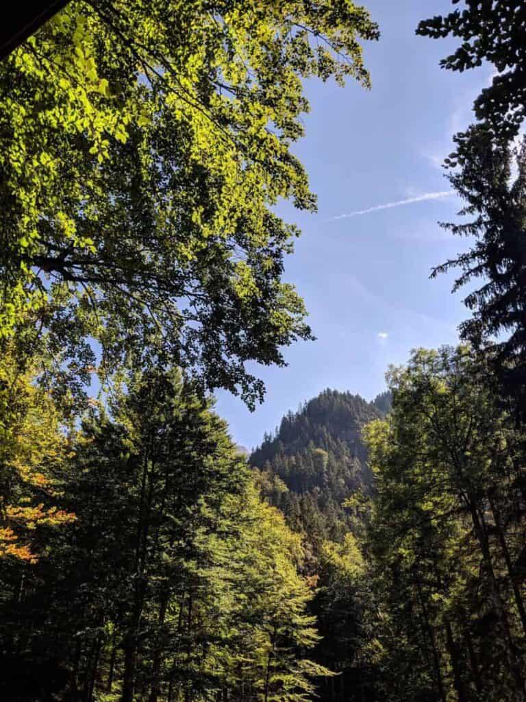 Schloß Neuschwanstein, Germany | A Nerd Travels