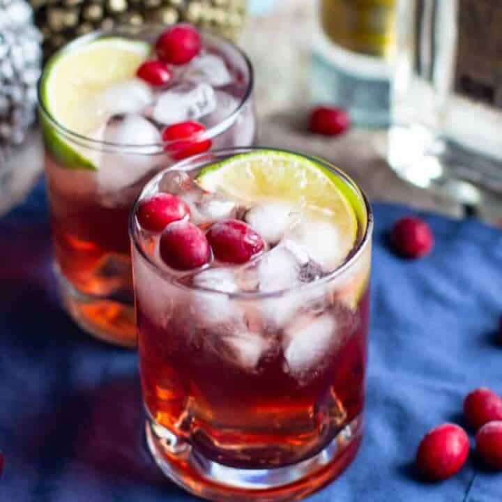 Cranberry Gin and Tonic | A Nerd Cooks