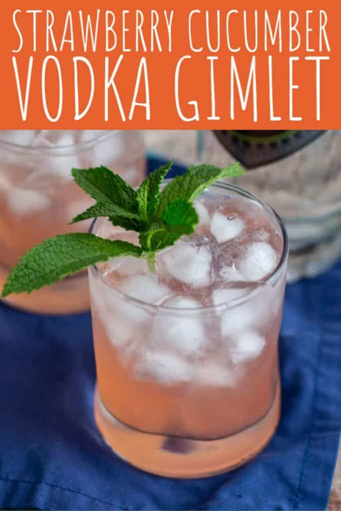 Strawberry and Cucumber Vodka Gimlet | A Nerd Cooks