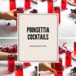 pinterest pin for poinsettia cocktails